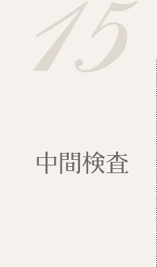 15. 中間検査